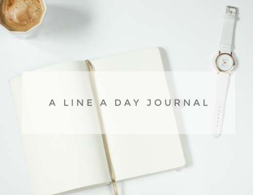 A line a day journal megg.me